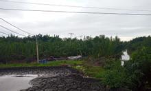 262m2 100% TCLN Hiệp Phước, Nhà Bè, giá tốt khu vực