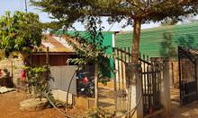 Đất thổ cư SHR ngang 8m, xã Đăk Lao, 240m2, đường nhựa xe hơi