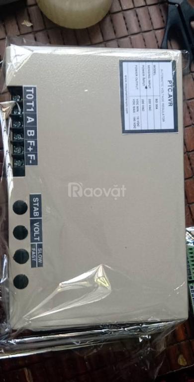 AVR Máy phát điện, bộ kích từ máy phát điện