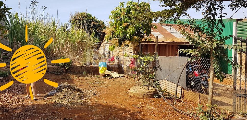 Đất thổ cư SHR ngang 7m, xã Đăk Lao, 231m2, đường nhựa xe hơi