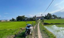 2569m2 đất ruộng, Vạn Thắng, Vạn Ninh, Khánh Hòa