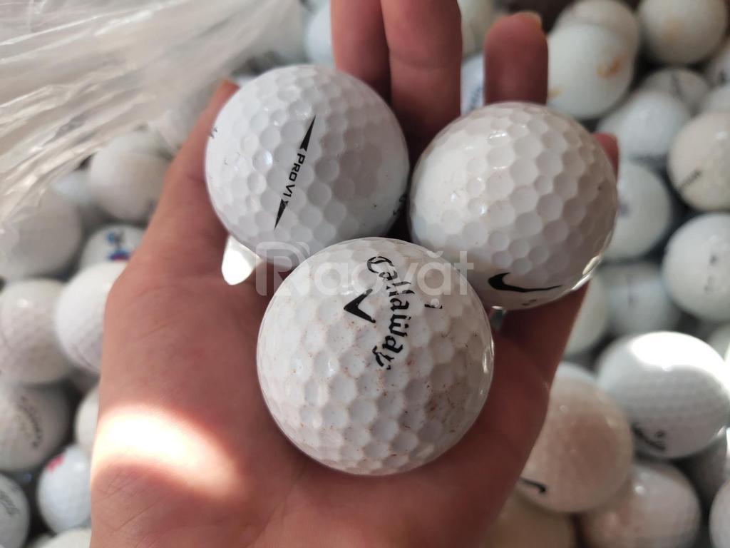 Bóng golf cũ hỗn hợp các loại giá rẻ