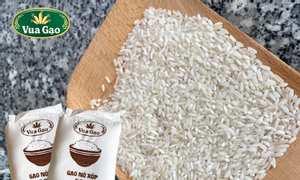Gạo 504 cũ bạn biết gì về loại gạo này chưa