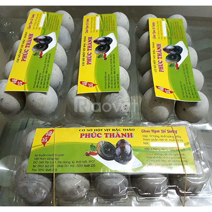 Hộp 10 trứng vịt bắc thảo