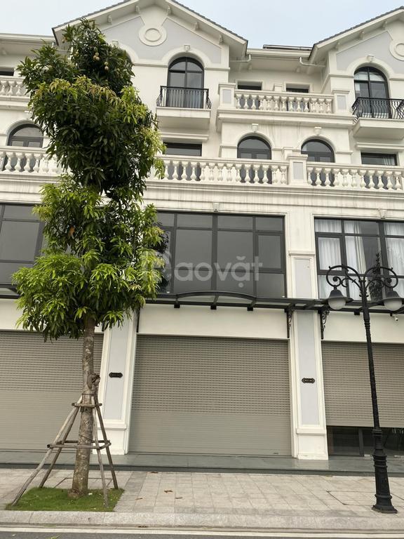 Chính chủ cần bán cặp shophouse SB23 135m2 Da Vinhomes Ocean Park