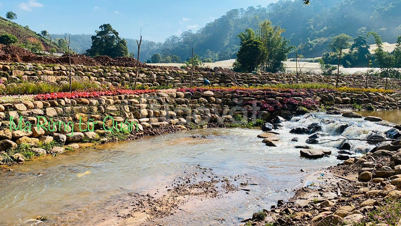 Bán biệt thự Đà Lạt, nghỉ dưỡng, an cư và đầu tư gần gũi thiên nhiên