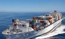 Ưu đãi lớn dành cho khách hàng Nmshipping vận tải quốc tế