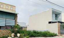 Chính chủ bán 2 nền đất 100m2, mặt tiền đường số 2, khu Tân Tạo