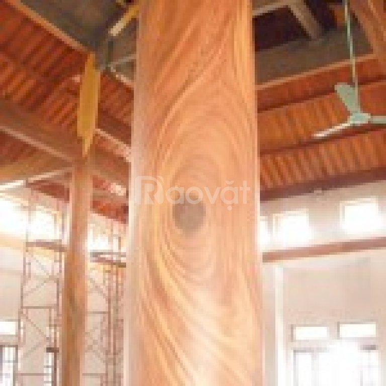 Tập đoàn sơn Nhật Bản sản xuất và bán sơn trang trí, giả gỗ, vân vây