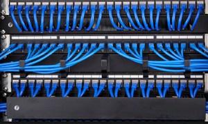 Patch cord dây nhảy mạng Commscope phân phối số lượng