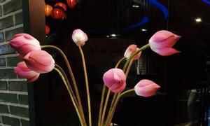 Máy khuếch tán tinh dầu và tinh dầu thơm của Nhật Bản