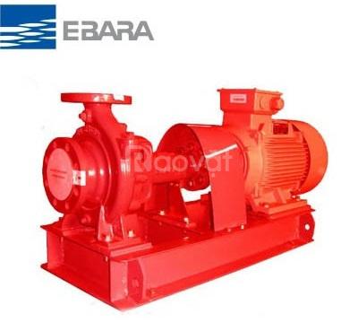 Máy bơm Ebara FSJCA 125x100