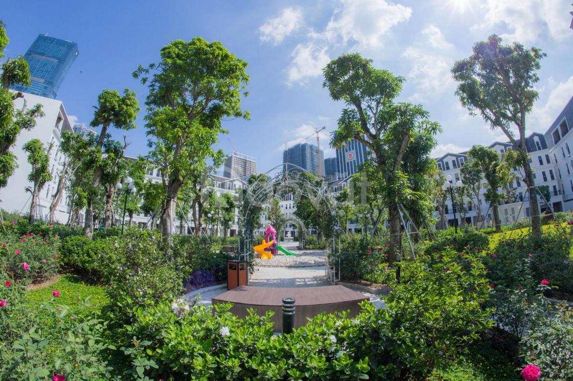 5 lý do nên sở hữu nhà vườn Trung Hòa, Cầu Giấy, Hà Nội