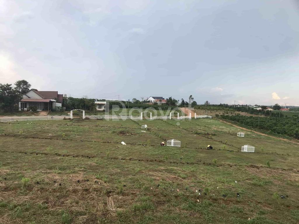 Đất nền ĐamBri Lâm Đồng, đón đầu cao tốc Tân Phú, Bảo Lộc