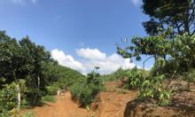 Đất Bảo Lộc view đẹp, giá rẻ