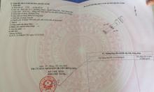 Bán đất Đông Thịnh Đông Sơn Thanh Hóa mặt bằng 5361