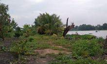 Chính chủ bán 19.200m2 đất lúa 2 mặt tiền và 2229 m2 thổ cư dọc sông