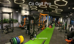 Thảm cỏ golf phòng gym