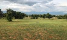 Đất Phan Thanh, Bắc Bình, Bình Thuận gần ngay khu du lịch Safari