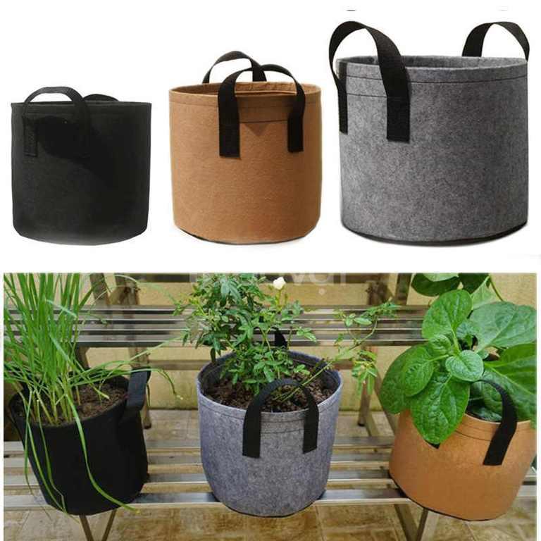 Túi trồng cây vải không dệt PE