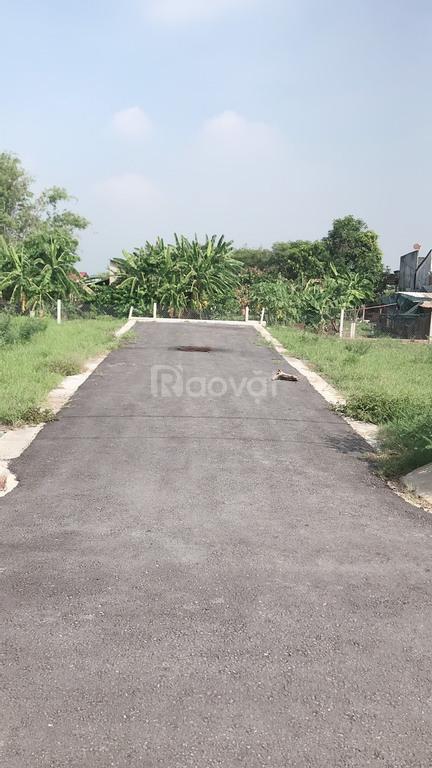 Cần bán đất có sổ đỏ thổ cư gần cảng Quốc Tế Long An, tỉnh lộ 833