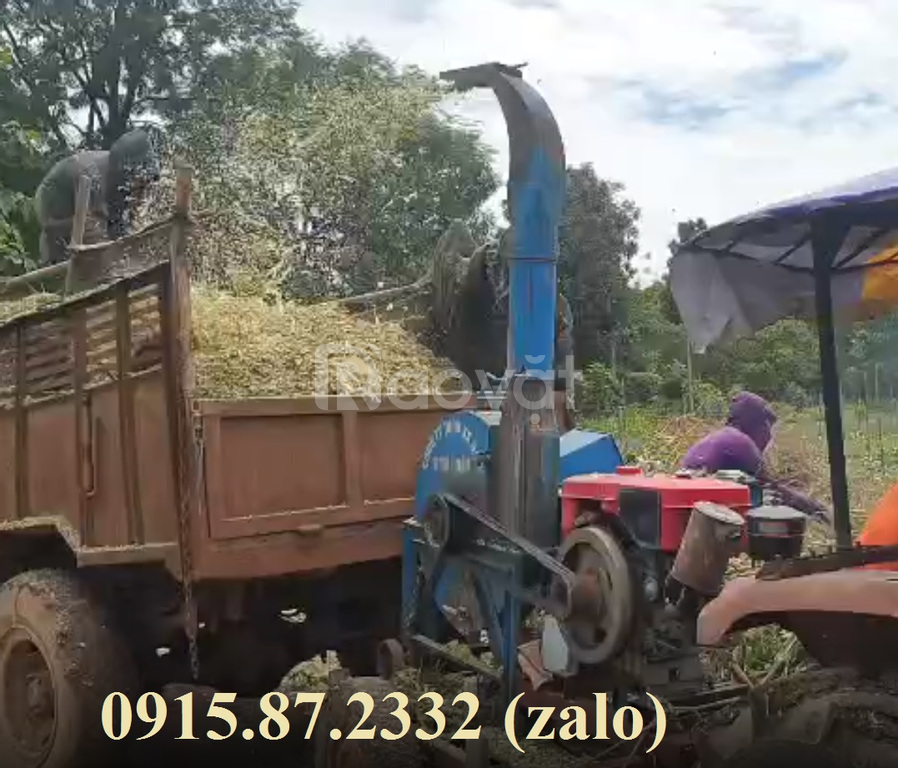 Máy băm cỏ 4T băng tải, dùng đầu nổ
