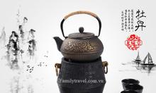 Ấm gang pha trà cao cấp phong cách Nhật