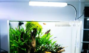 Đèn led nano a1 cho hồ cá