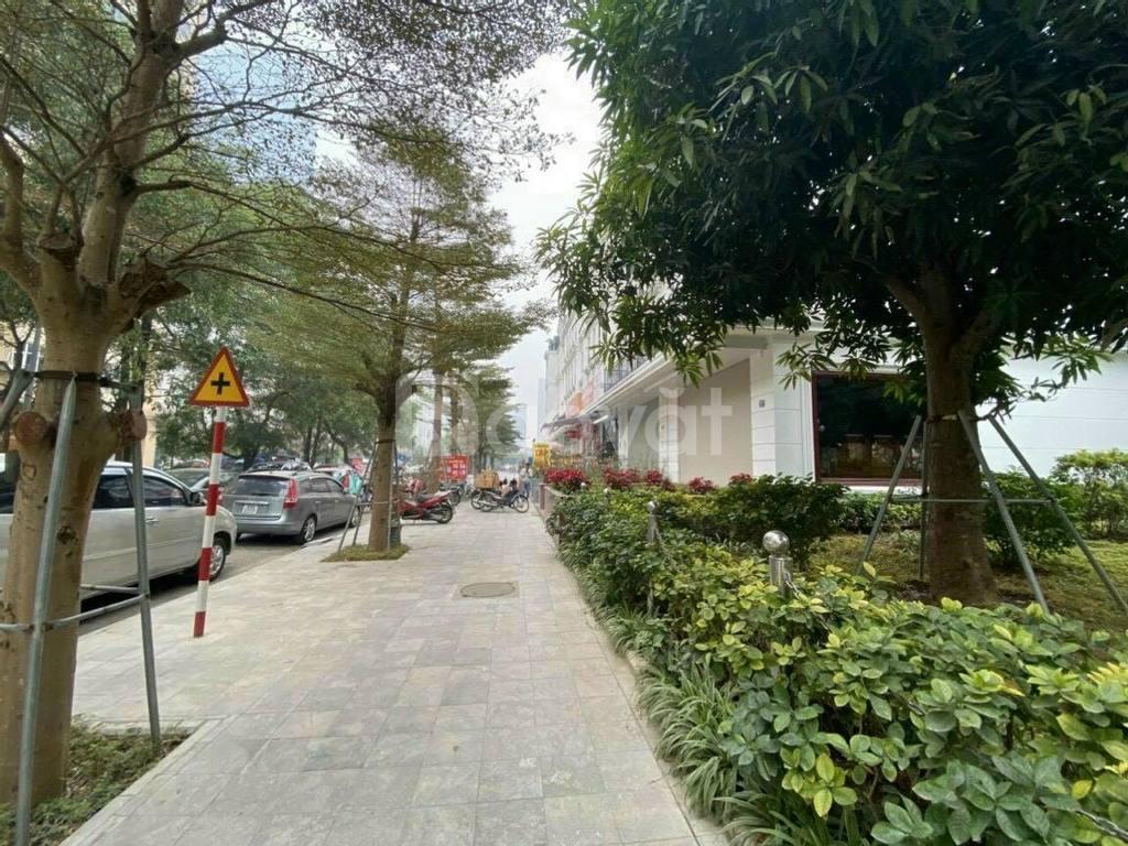 Bán gấp căn nhà KĐT Nam Trung Yên, tổng sử dụng 400m2