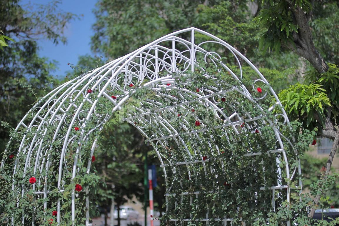 Bán căn liền kề Cầu Giấy sân vườn rộng, phù hợp để ở