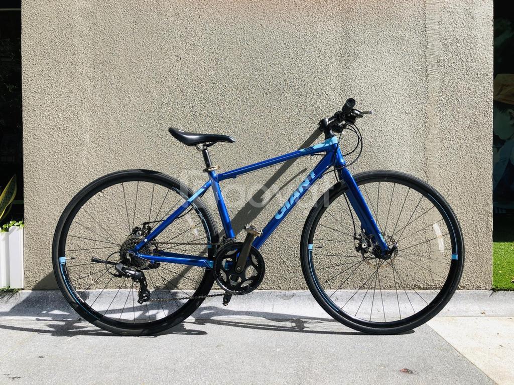 Xe đạp lướt Touring Giant FCR3100, màu hiếm Deepblue