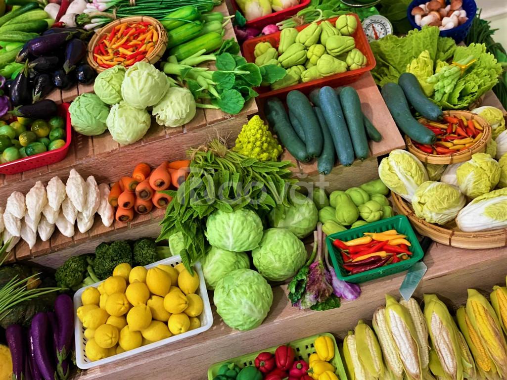 Cung cấp sỉ lẻ rau củ quả tại Gò Vấp