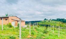 Bán đất tại Bảo Lộc 10000m2 hẻm Lê Phụng Hiểu phường Lộc Tiến