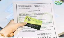 Dịch vụ làm Health Certificate bánh trung thu trà xanh xuất khẩu