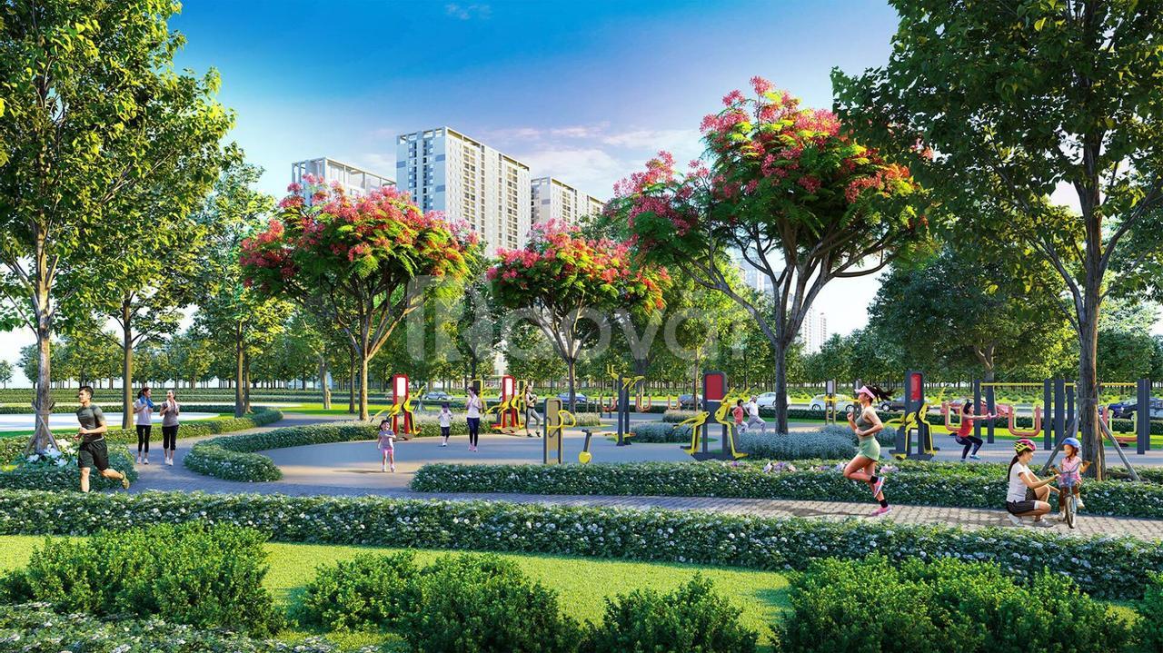 Hinode Royal Park xanh mướt và bình yên giữa lòng đô thị