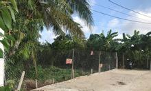 Chính chủ bán đất thổ vườn 5.600m2, đường Ngã Bát, Cái Răng, Cần Thơ