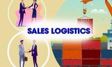 Khóa học nghiệp vụ Sales Logistics thực hành thực tế