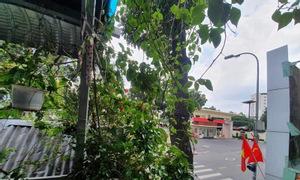 Nhà mặt tiền đường Nguyễn Trãi, Quận 1, 37m2