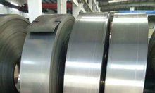 Thép đàn hồi các loại, kích thước theo yêu cầu, sản xuất tại TQ