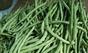 Cá, rau củ quả, miền Tây ship liên phường Tân Phú nhé
