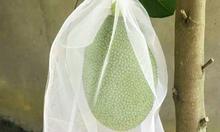 Lưới cuocs may túi bao mít, bảo vệ mít trước tác động môi trường