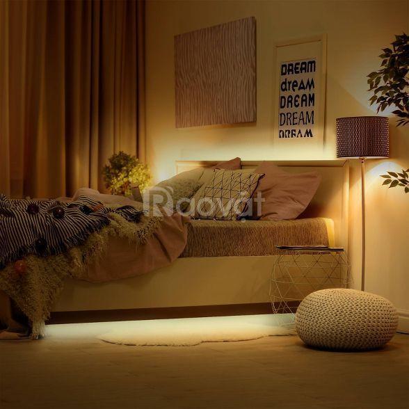 Bóng đèn Led dây Flexi 25W DC24V EX0225 ánh sáng vàng
