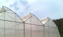 Nhà lưới trồng cây công nghệ cao, mẫu nhà lưới đơn giản