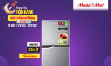 Tủ lạnh Panasonic inverter 234L