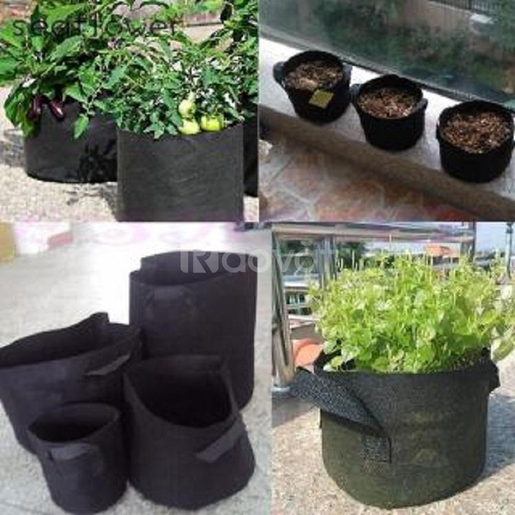Túi trồng cây vải địa kỹ thuật, túi PE