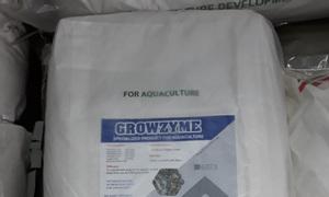 GROWZYME - Enzyme tiêu hóa giúp nở to đường ruột tôm cá