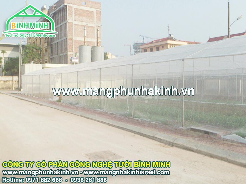 Tự tạo cơ hội trồng rau trong nhà lưới, nhà lưới trồng dưa lưới
