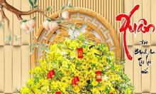 Tranh gạch men hoa mai vàng 3d ốp tường HP0123