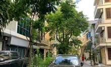 Bán nhà phân lô, ô tô tránh, mặt tiền rộng, Nguyễn Văn Cừ, Long Biên