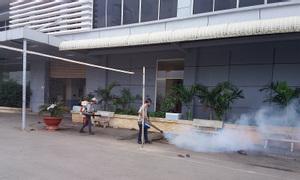 Dịch vụ diệt ruồi, cách làm thuốc diệt ruồi giá rẻ